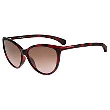 Lunettes de soleil et accessoires de lunetterie Calvin Klein Tunisie ... 2efe1754381a